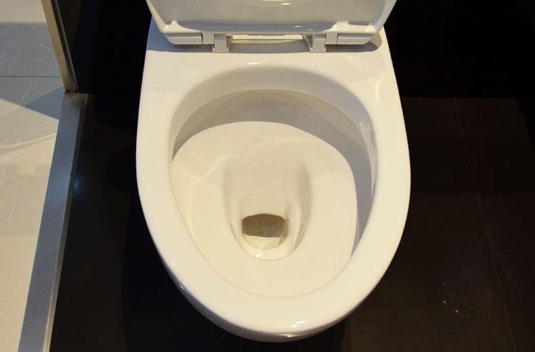 toto卫浴洁具 马桶座便器cw981nb地排水缓盖