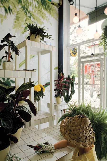 希腊帕特雷的室内花店装修效果图