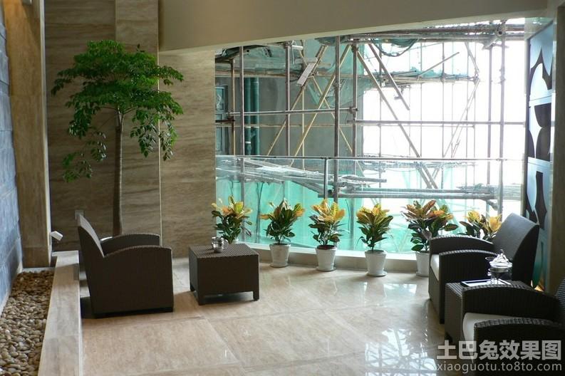 室内阳台盆栽植物图片装修效果图