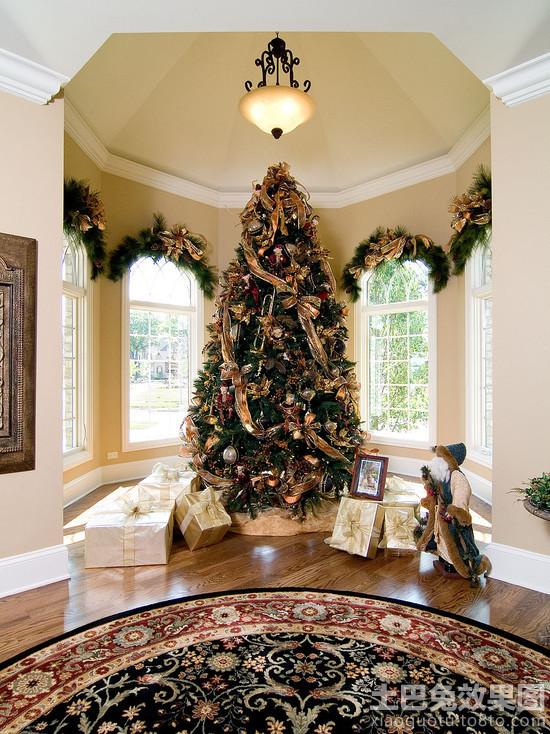 室内摆放大型圣诞树图片